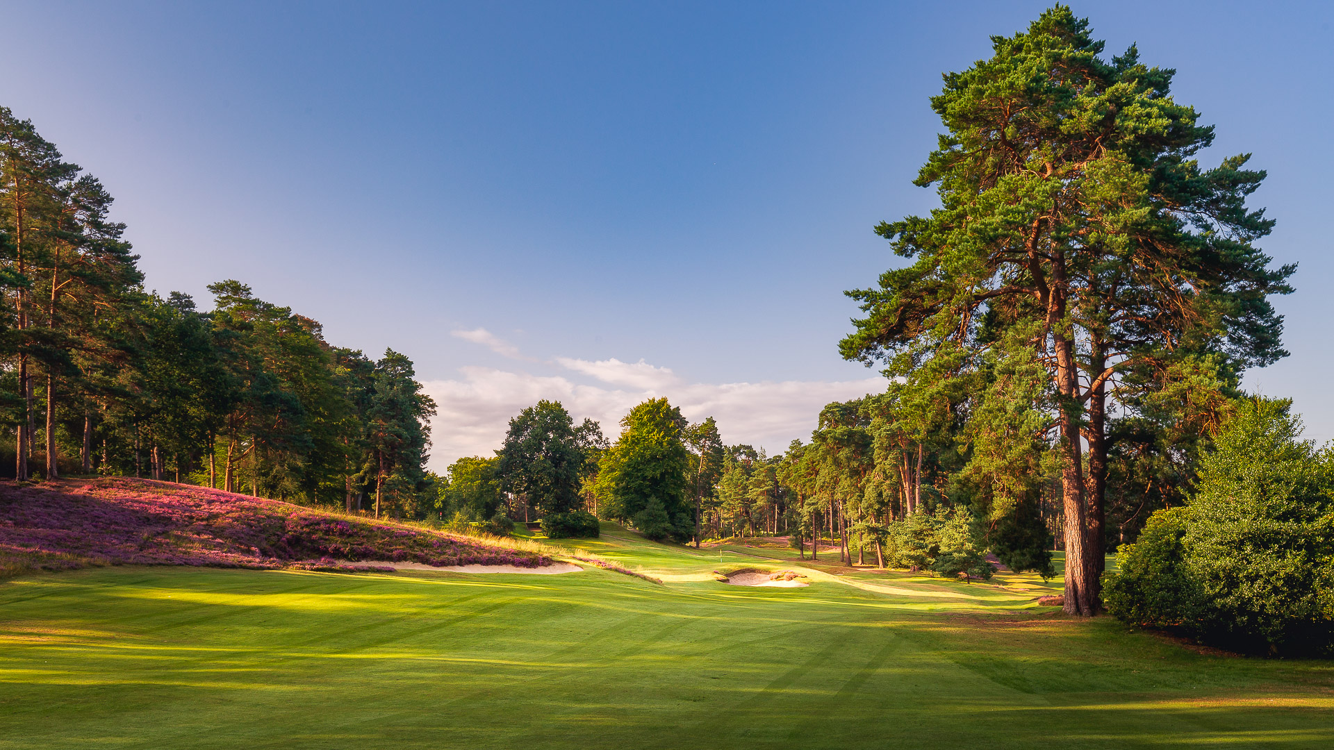 10th-Hole-St-Georges-Hill-Golf-Club-2228-Edit