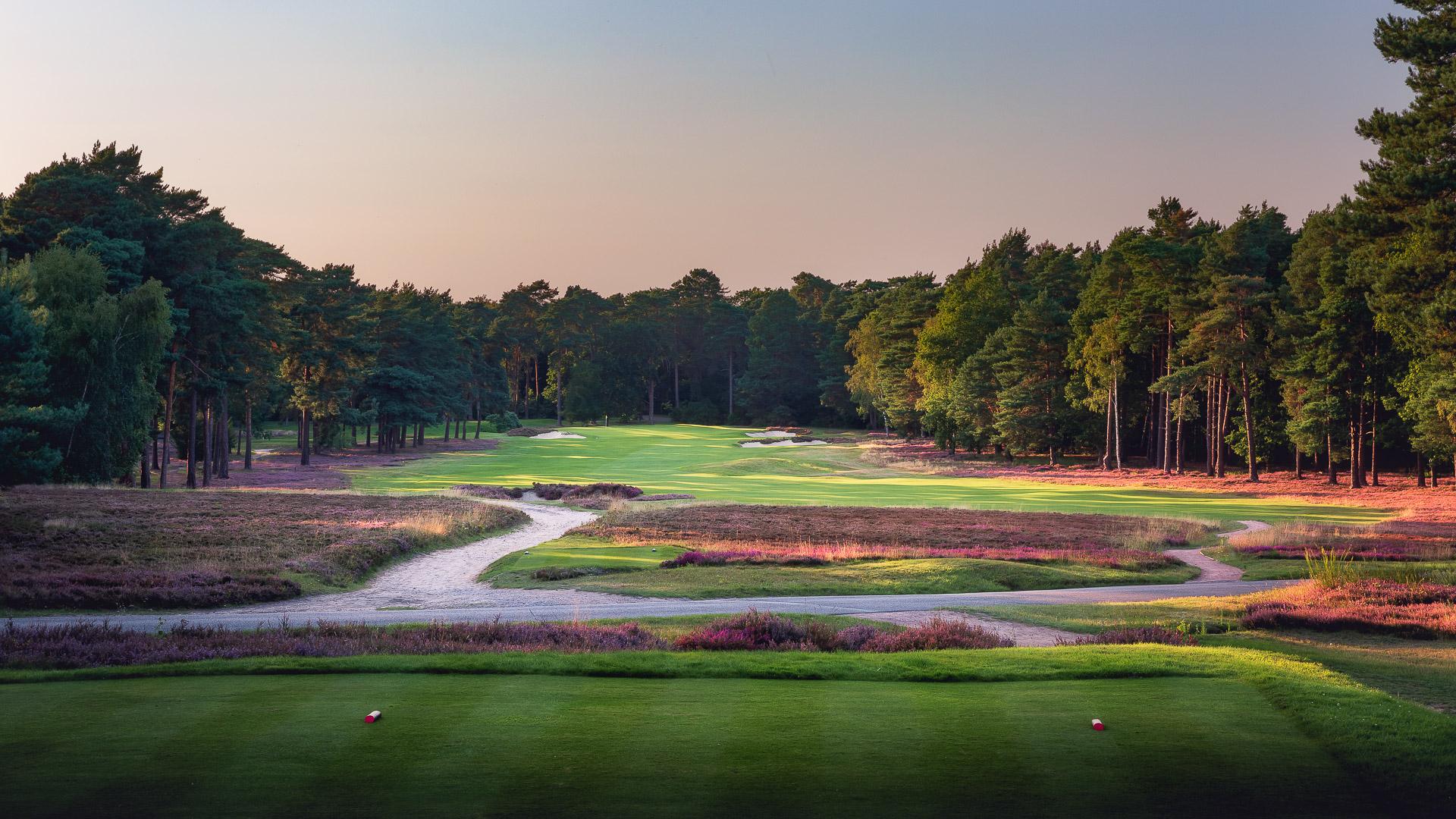 06th-Hole-St-Georges-Hill-Golf-Club-2261-Edit-2