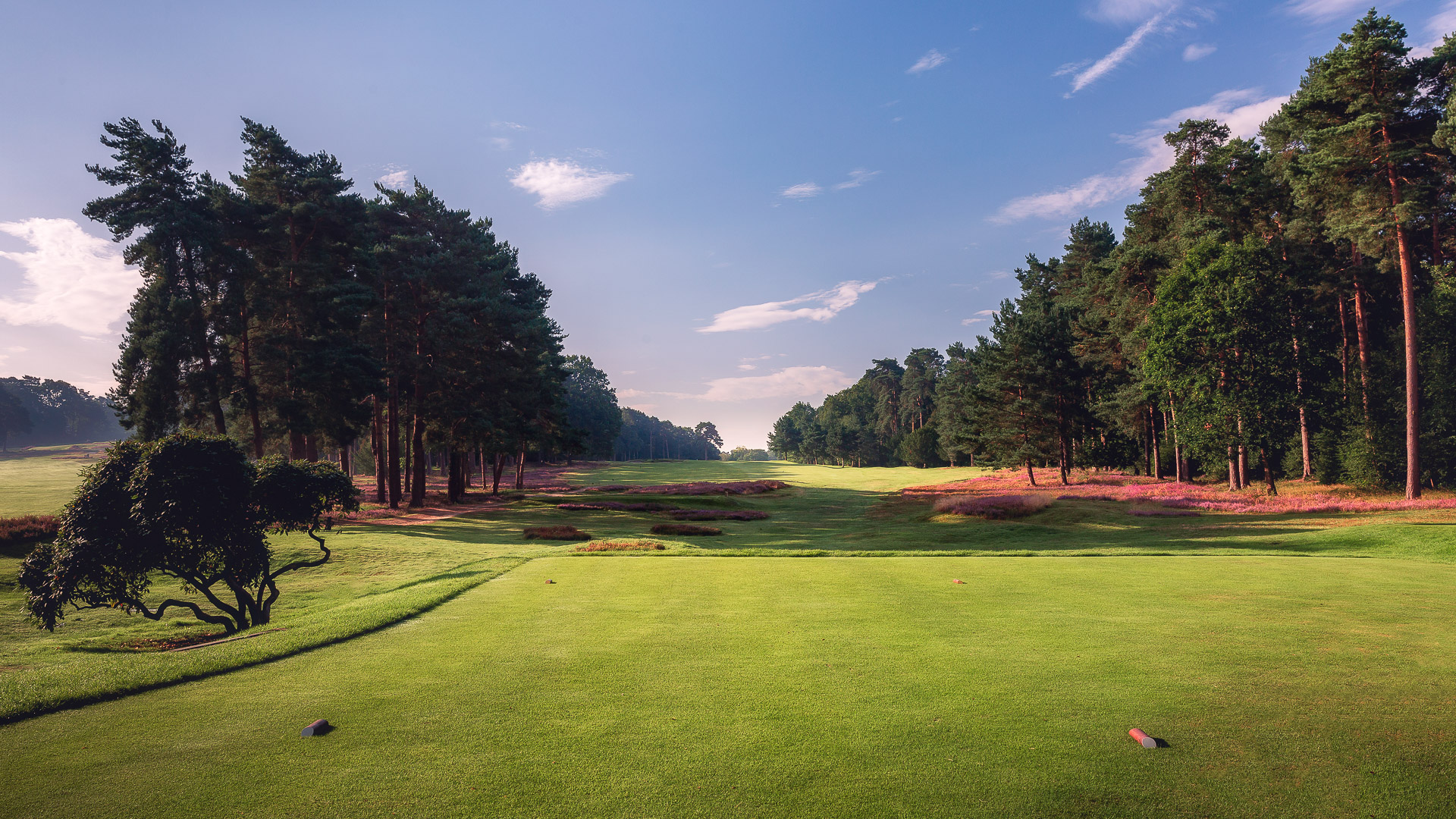 07th-Hole-St-Georges-Hill-Golf-Club-2145-Edit
