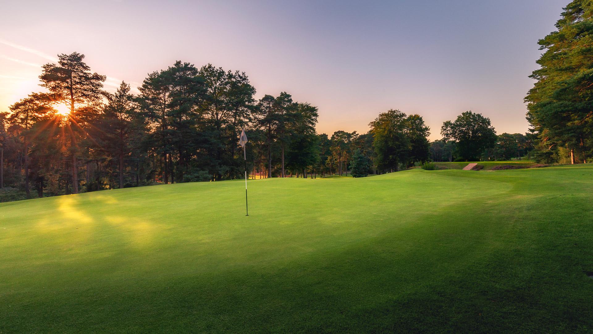 11th-Hole-St-Georges-Hill-Golf-Club-2142