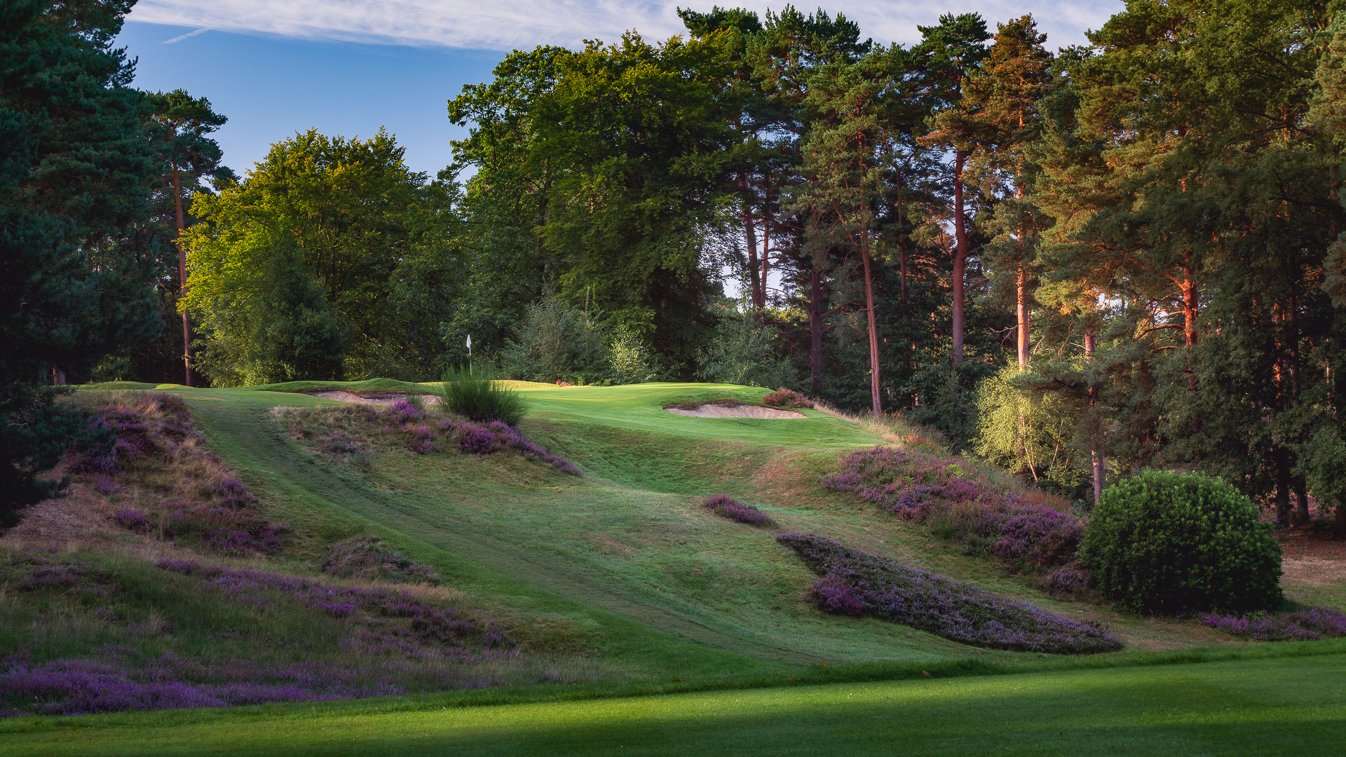 11th-Hole-St-Georges-Hill-Golf-Club-2153-Edit