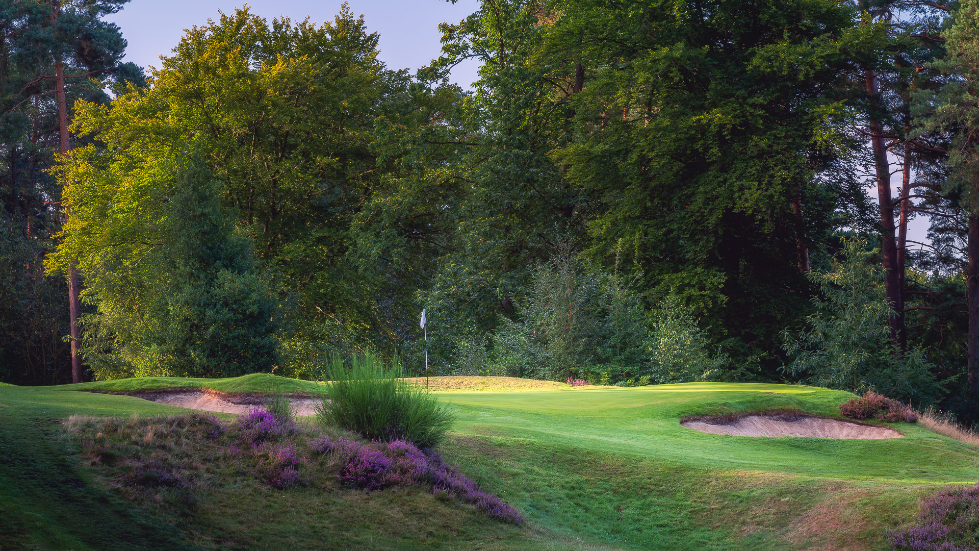 11th-Hole-St-Georges-Hill-Golf-Club-2168-Edit