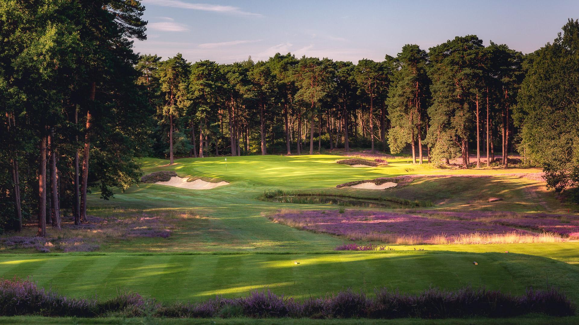 14th-Hole-St-Georges-Hill-Golf-Club-2217-Edit