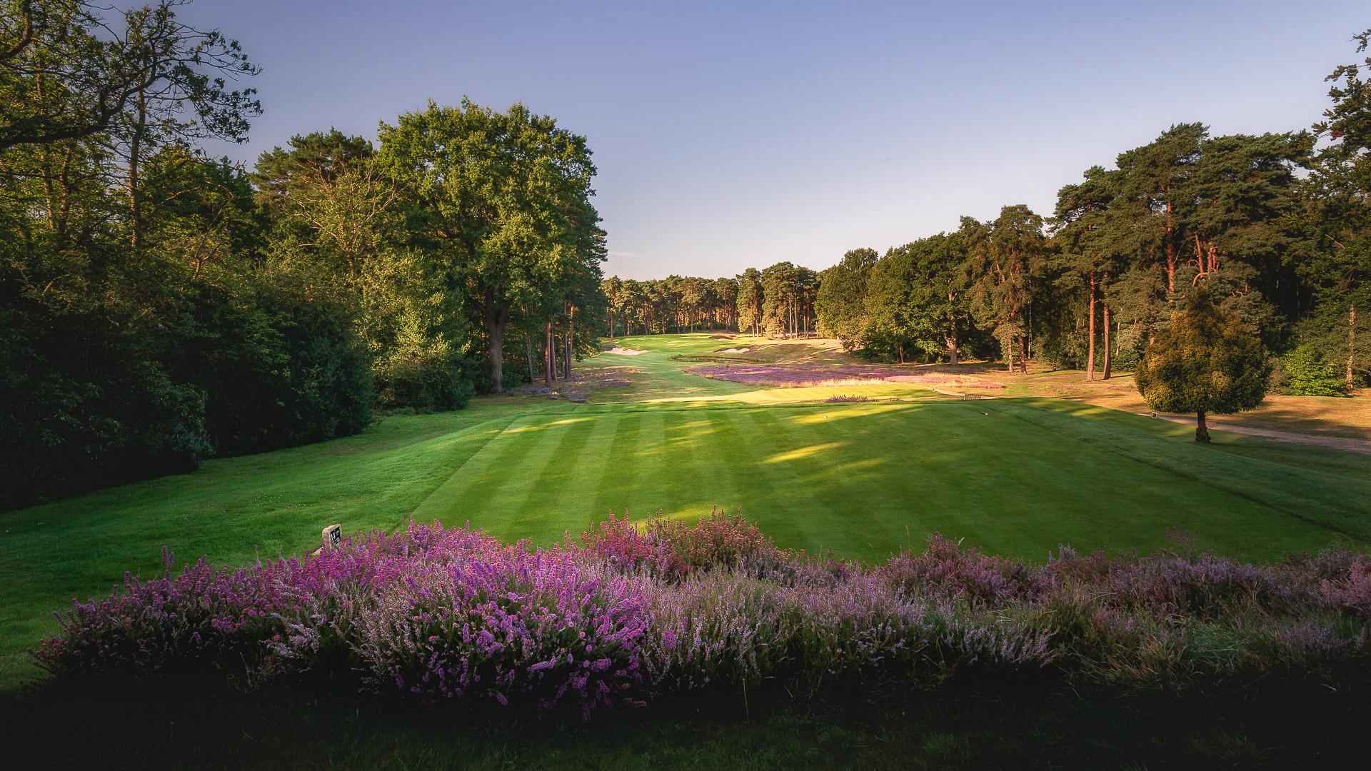 14th-Hole-St-Georges-Hill-Golf-Club-2230-Edit