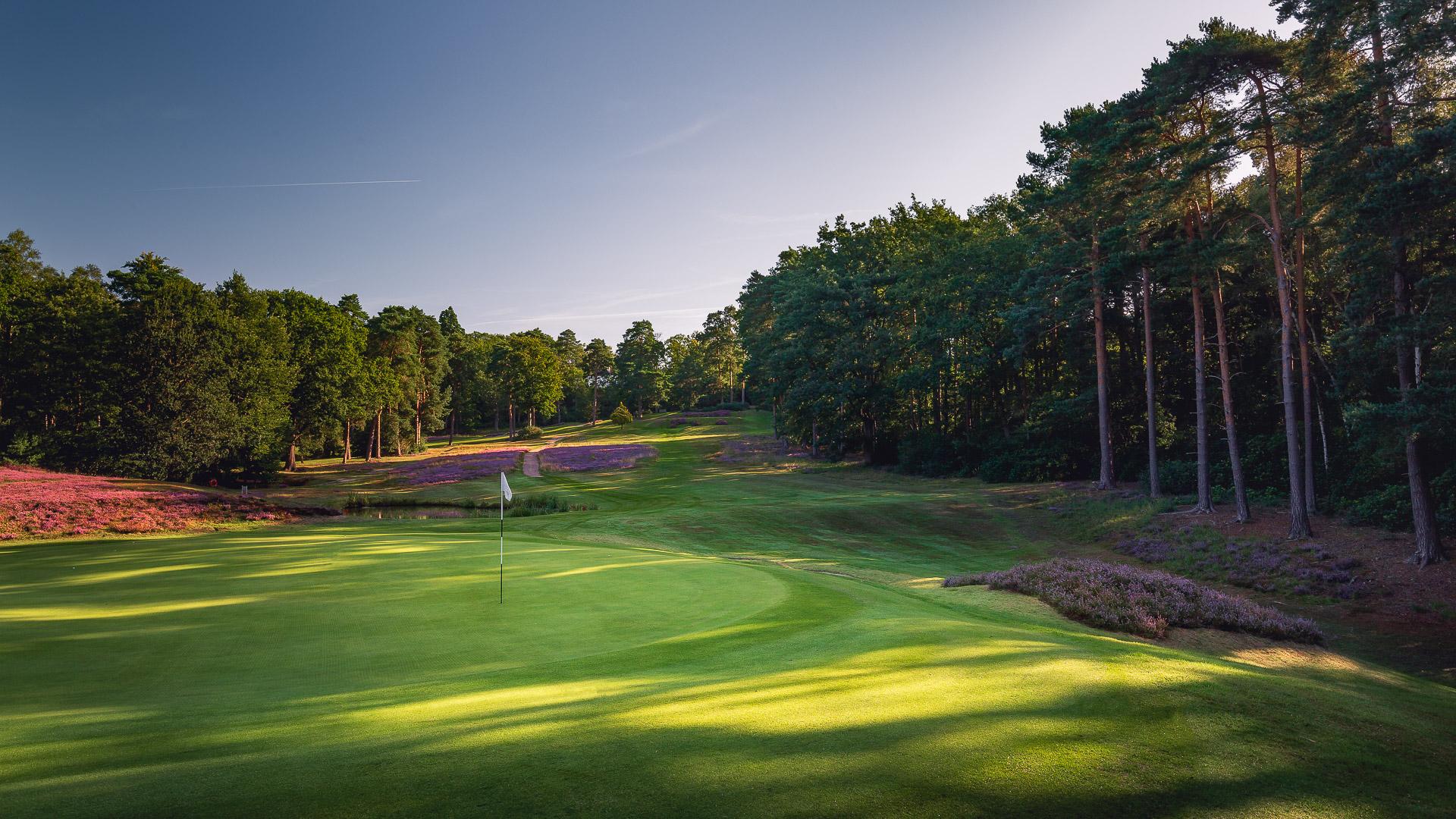 14th-Hole-St-Georges-Hill-Golf-Club-2272-Edit
