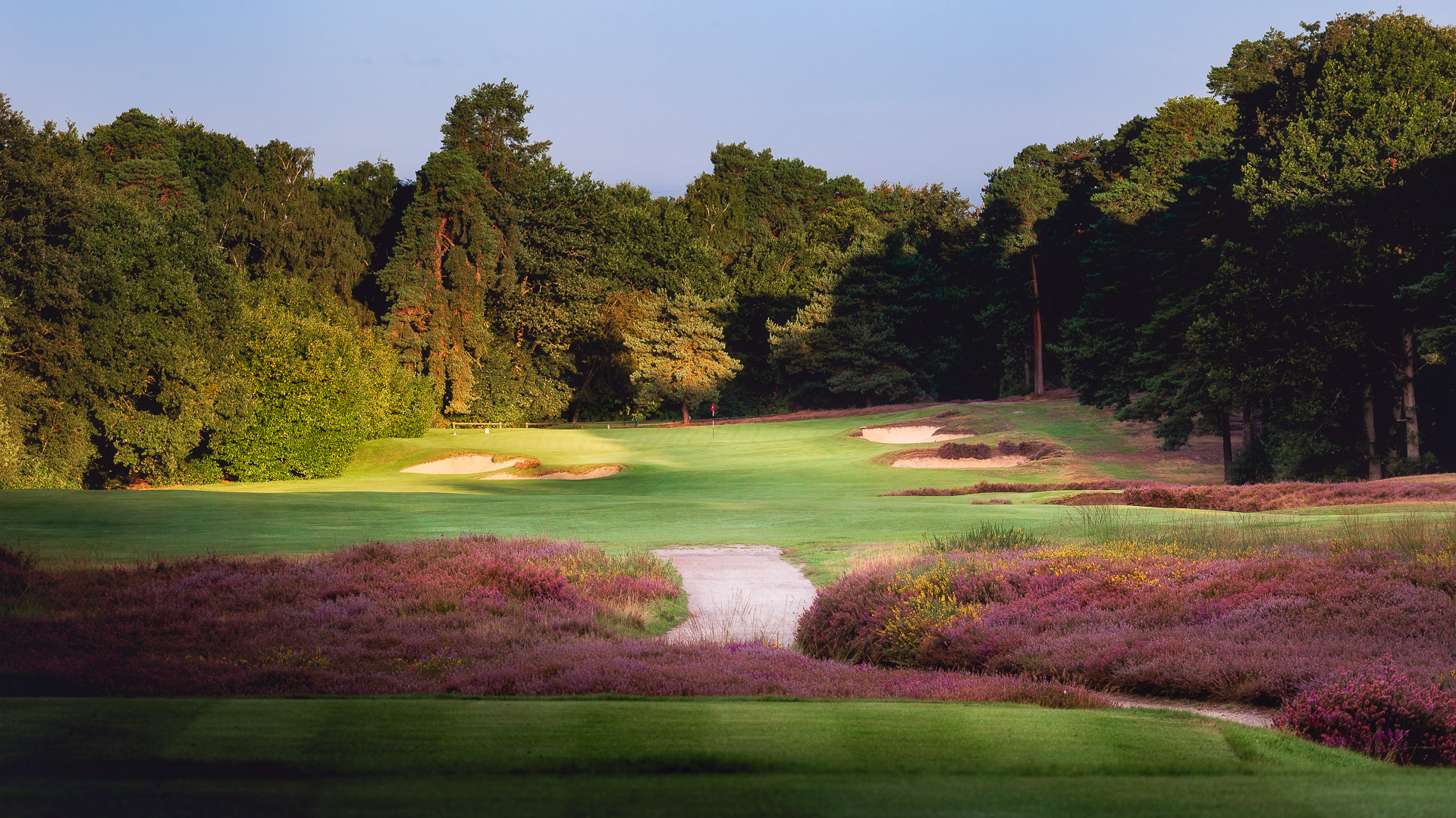 15th-Hole-St-Georges-Hill-Golf-Club-2395-Edit