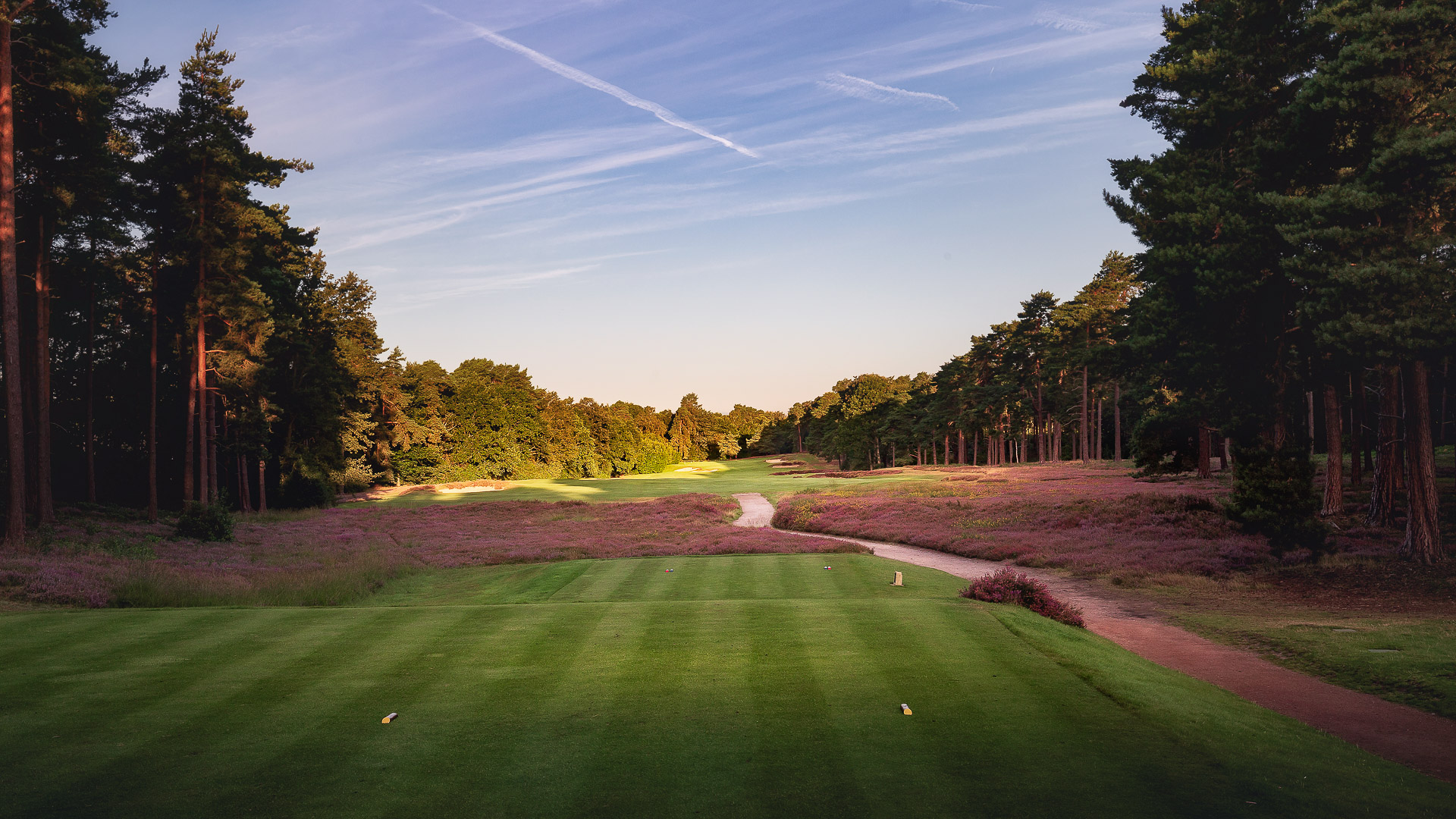 15th-Hole-St-Georges-Hill-Golf-Club-2438-Edit