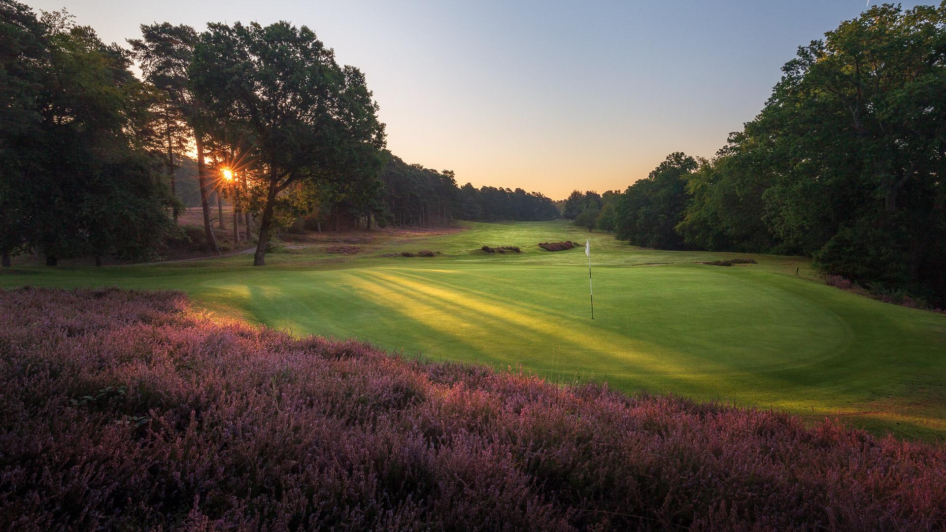 16th-Hole-St-Georges-Hill-Golf-Club-2562-Edit