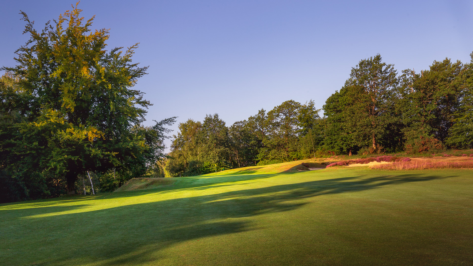 21st-Hole-St-Georges-Hill-Golf-Club-2052-Edit