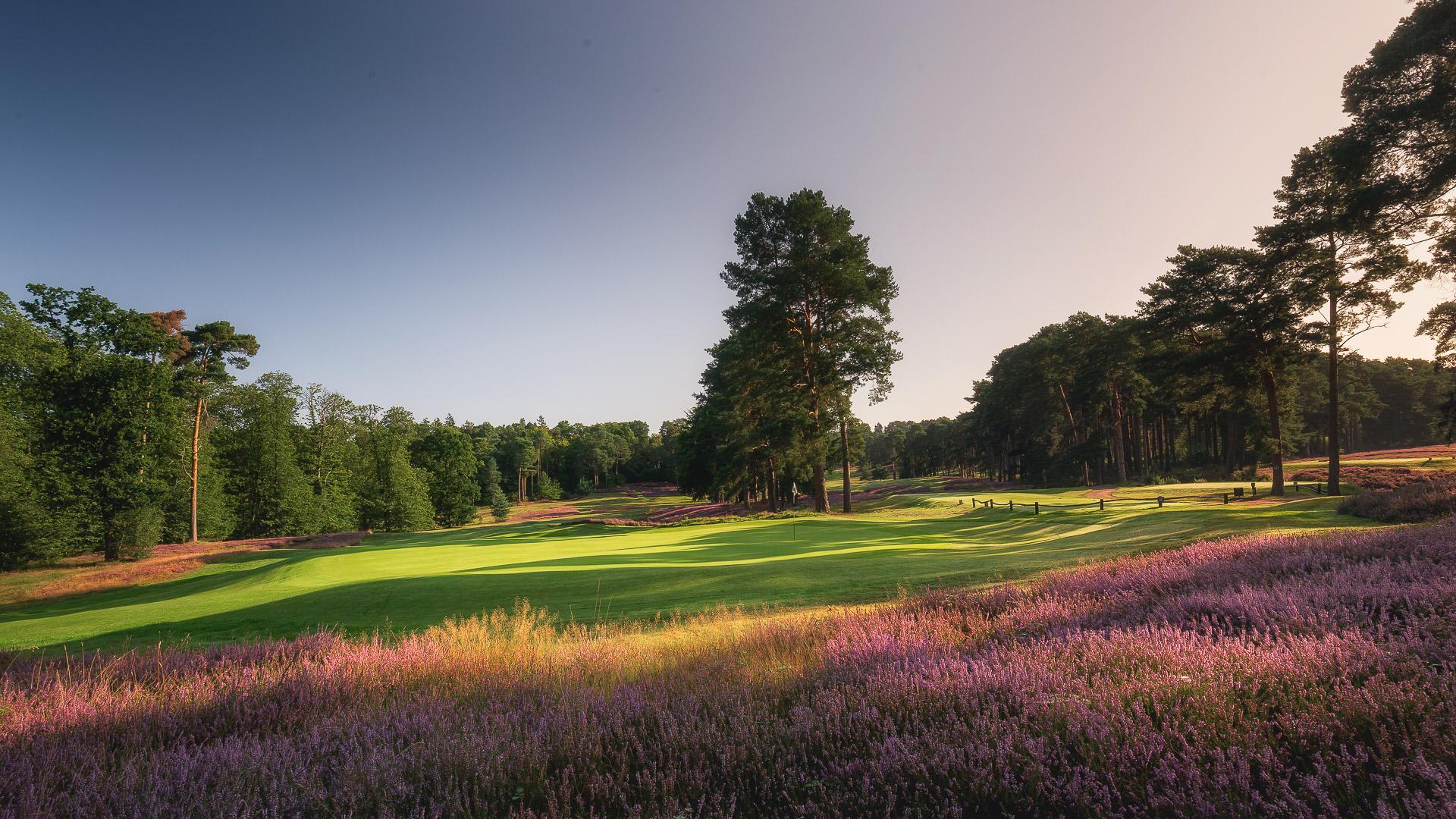 24th-Hole-St-Georges-Hill-Golf-Club-2092-Edit
