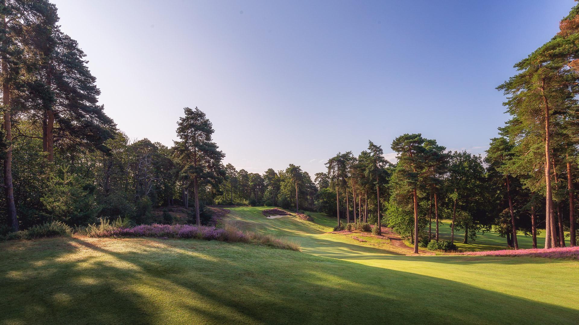 25th-Hole-St-Georges-Hill-Golf-Club-2010-Edit
