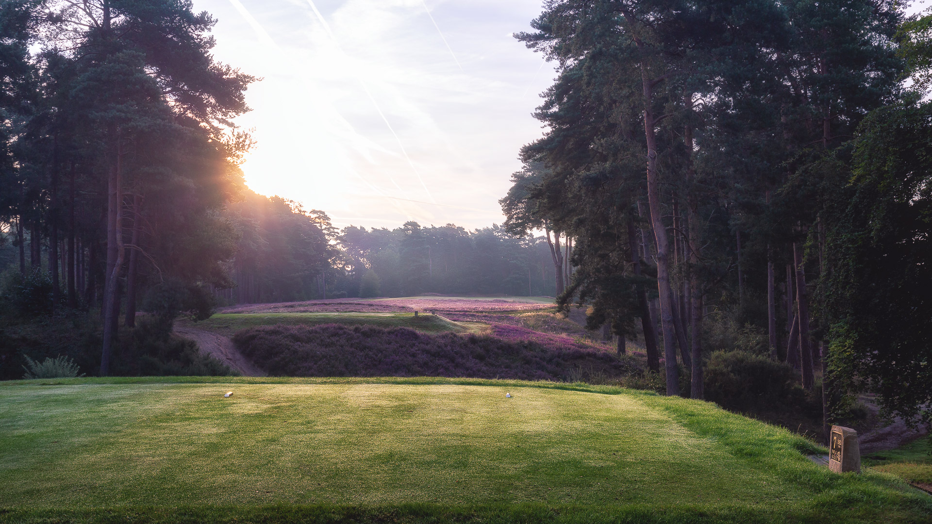 25th-Hole-St-Georges-Hill-Golf-Club-2050-Edit