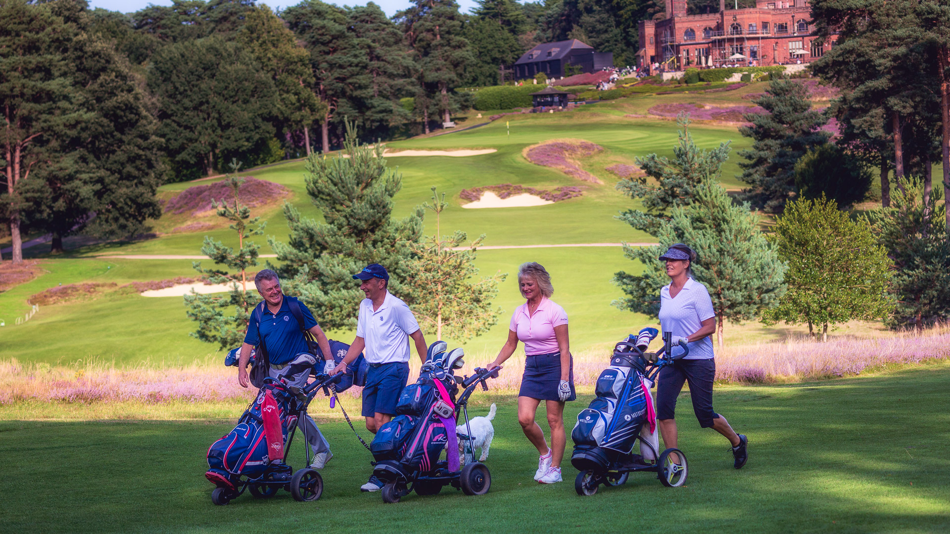 Green-Players-St-Georges-Hill-Golf-Club-1068